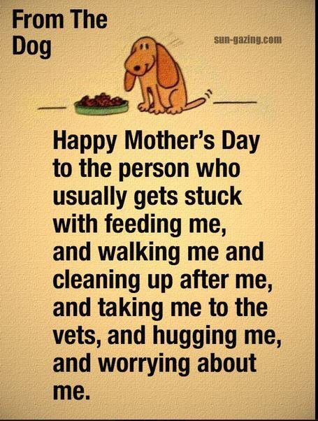 Happy Mother's Day Something to Wag About | Animal Quotes | Dogs