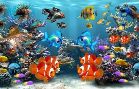Fonds D Ecran Anime Gratuit Aquarium Fond D Ecran Tropical