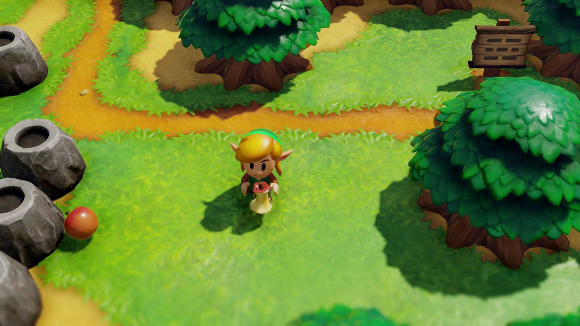Legend Of Zelda Link S Awakening How To Get Past The Raccoon Tips And Tricks Legend Of Zelda Crane Game Zelda