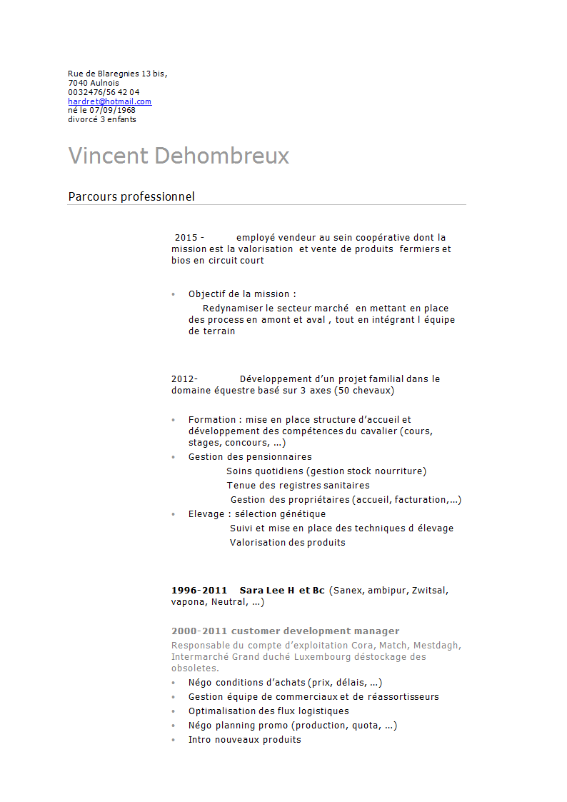 Cv Dehombreux Vincent Retail 1 Docx Vincent