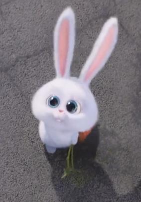 Humor Omg Im Snowball Pspel De Parede Papel De Parede Fofo Disney Desenhos De Animais Fofinhos