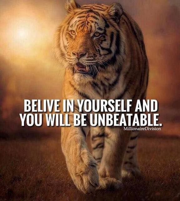 Pin By Sarah French On Tiger Quotes Beast Quotes Warrior Quotes