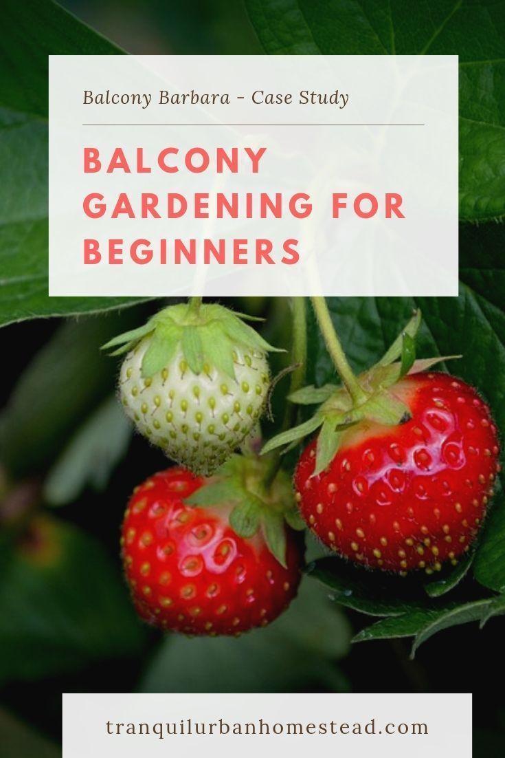 Photo of Fruit Gardening