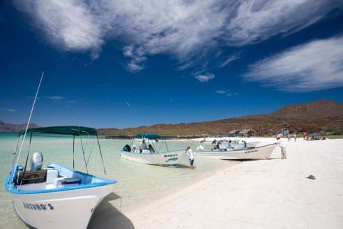 Loreto Baja Mexico Hotels Resorts Sport Fishing Vacations Call 1 800