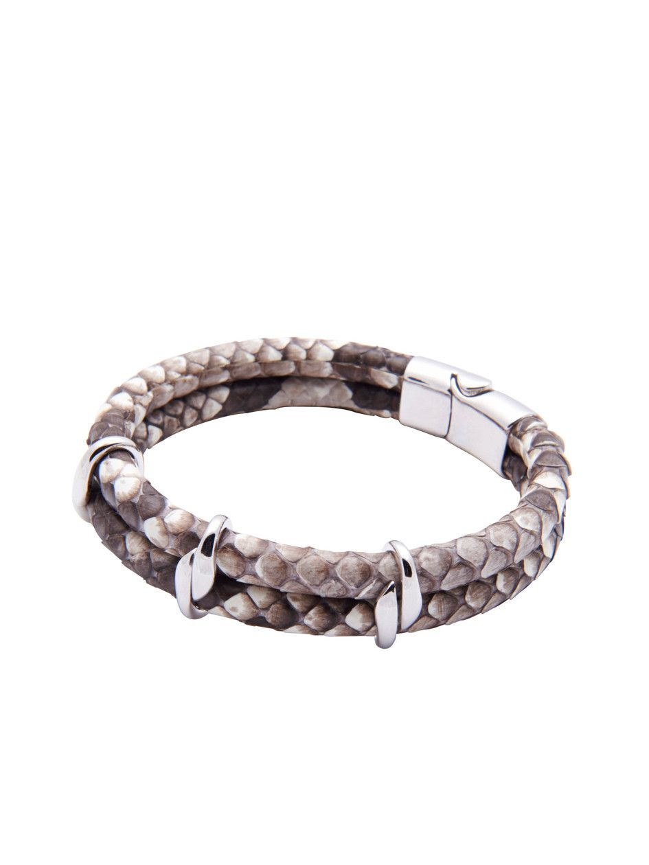Python Collection With Silver Lock