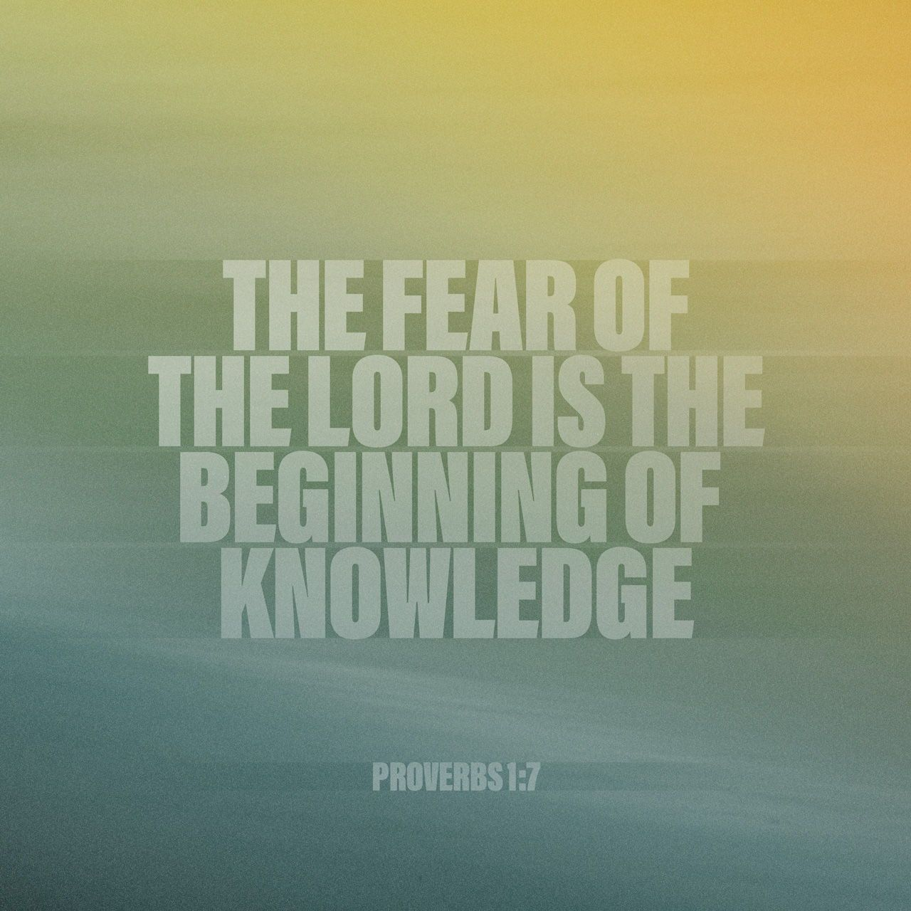 The fear of the Lord is the beginning of knowledge; fools