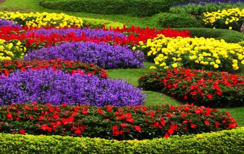 Home Flower Gardens And Flower Landscape Pictures Flower