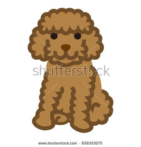 Stock Vector Miniature Poodle Simple Cartoon Illustration