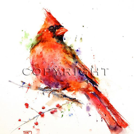 Cardinal Watercolor Bird Art Print Cardinal Painting By Dean