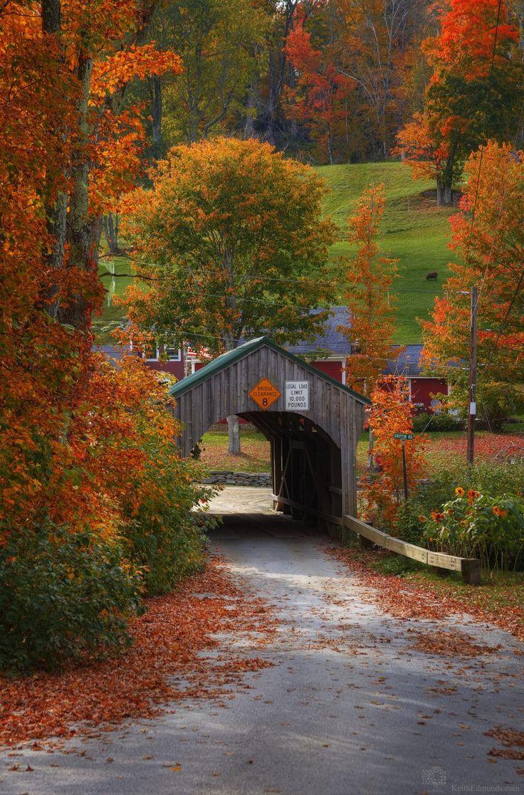 Vermont #Fall #Foliage #autumnscenery
