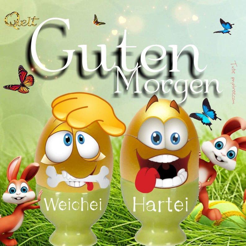 Ostern Guten Morgen Ostern Ostern Lustig Und Guten Morgen