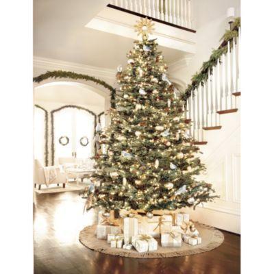 Noble Fir Christmas Tree Ballard Designs Noble Fir Christmas Tree Fir Christmas Tree Christmas Tree