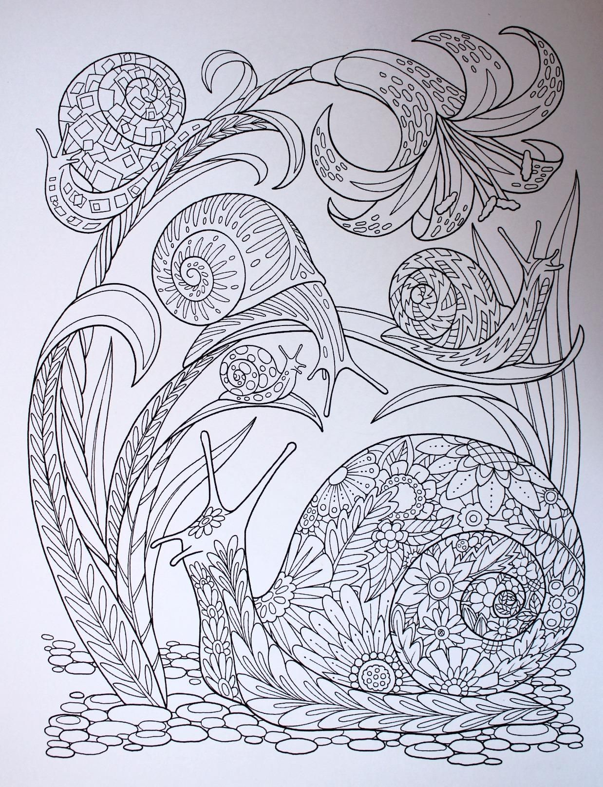 Amazon Com Garden Paths Coloring Book Inc And Kathryn Marlin Action Publishing Toys Games Coloring Books Abstract Art Painting Diy Coloring Pages