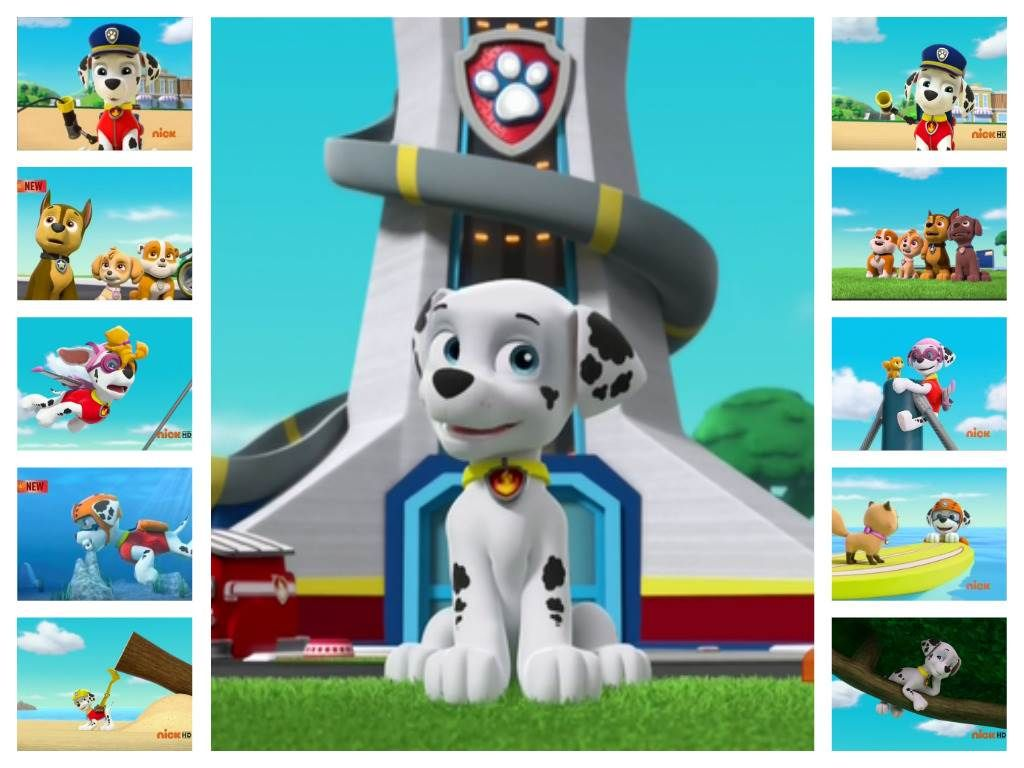 Paw Patrol Wallpaper 1600x1200