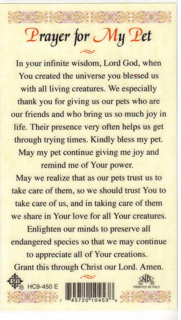 Prayer for My Pet 1 Pets, Animal quotes, Prayers