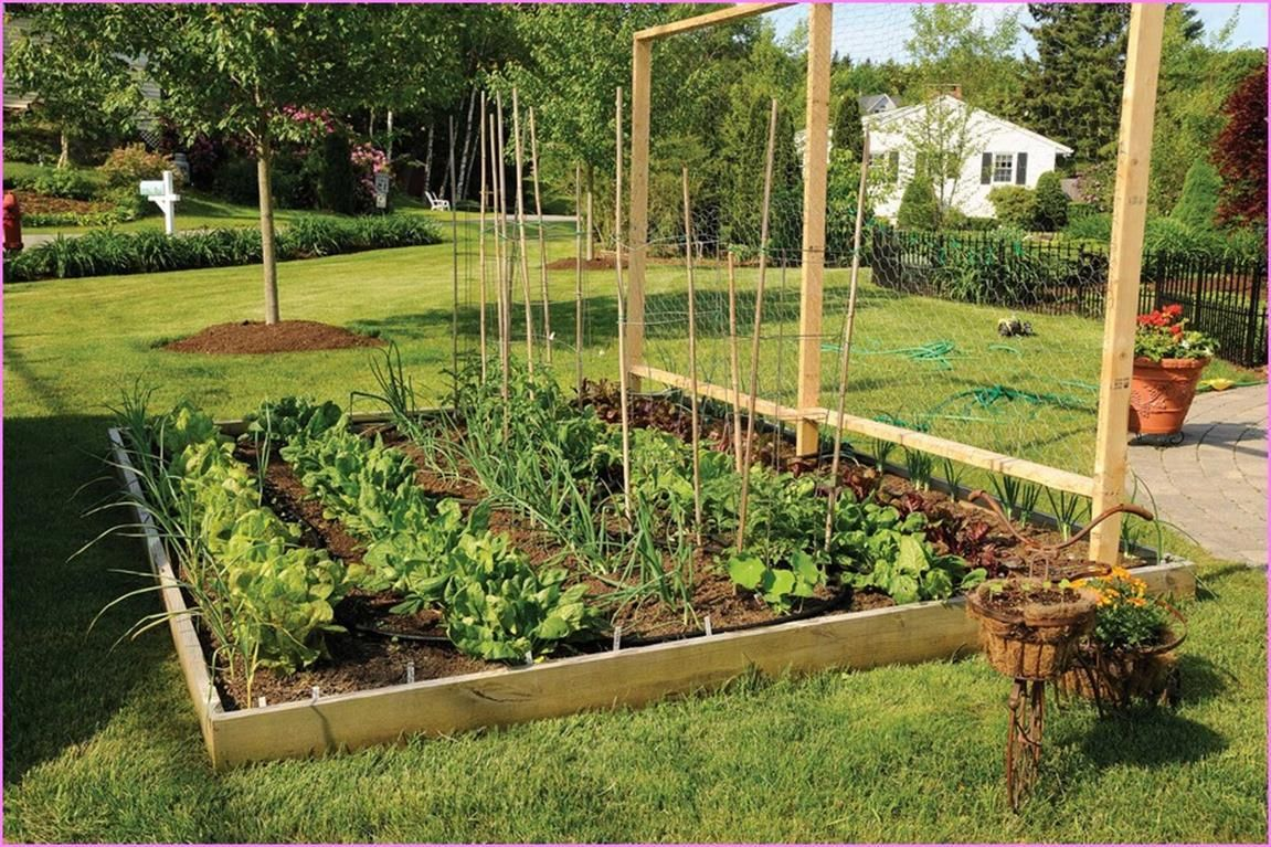 Best 47 Inexpensive Decorative Vegetable Garden Fencing Ideas ...