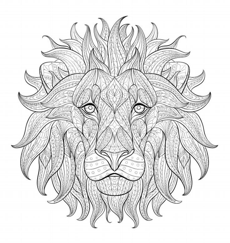 Realistic Lion Adult Coloring Pages Free Lion Coloring Pages