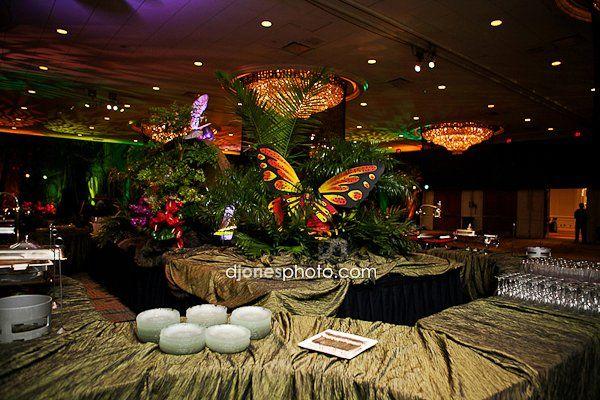 Tropical rain forest theme party ideas pinterest for Rainforest decorations