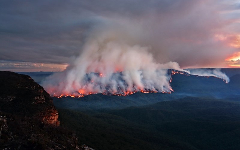 Concerning Australia's fires there is the global warming
