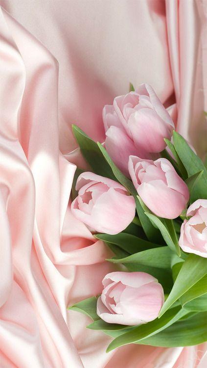 foto de iPhone 5 Wallpapers   Flowery wallpaper, Pink tulips, Tulips flowers