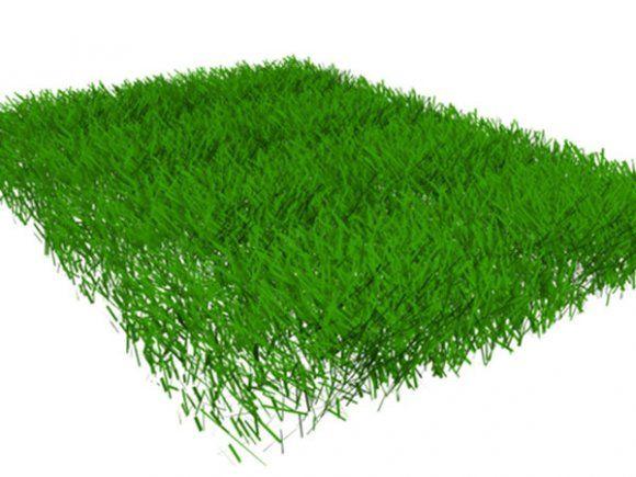 Grass 3d Model 3ds 3d Model Grass Grass Field