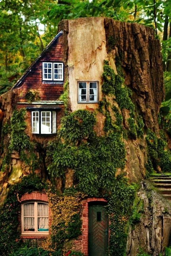 15 Must See Homes That Are Completely Enveloped By Nature Crazy Houses Fairytale House Unusual Homes