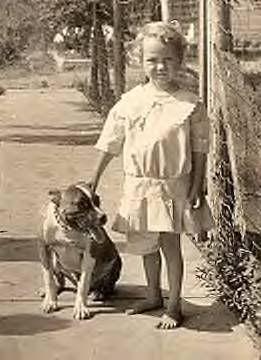 199 best images about Vintage Dog Postcards (all breeds ...  |American Pit Bull Terrier Vintage