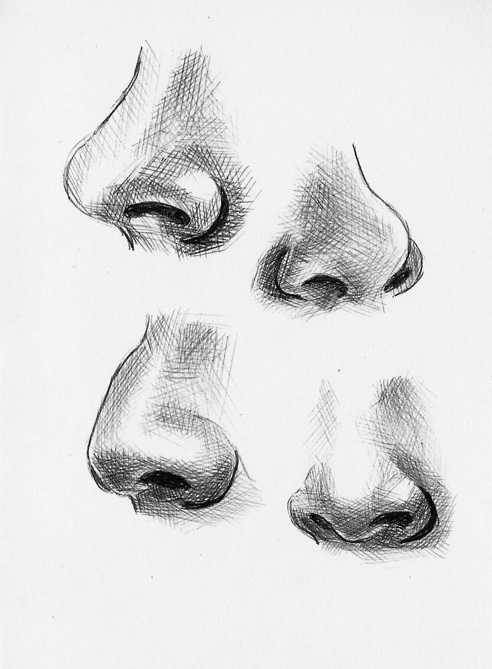 Nose Pencil Sketch Black And White
