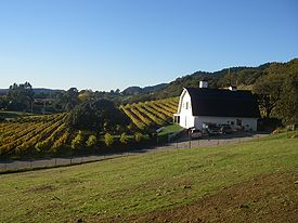 Running Rabbit Ranch & Vineyard