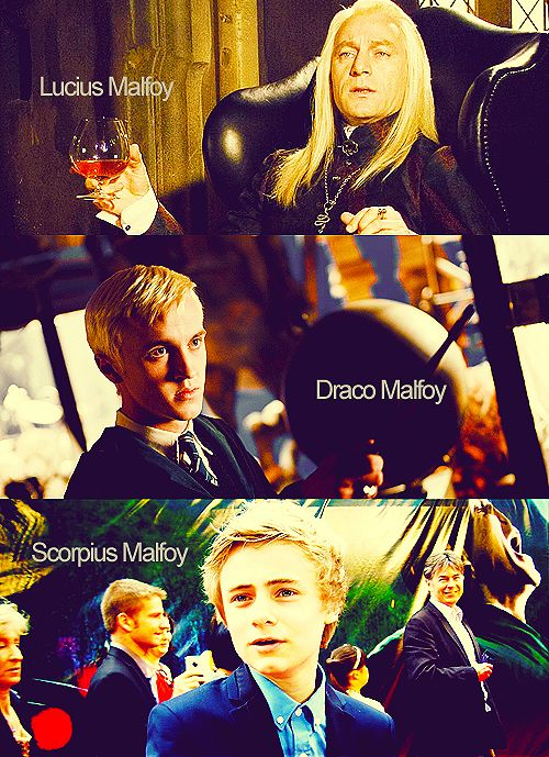 Spiksplinternieuw The Malfoys - whoever this Scorpius is, he's quite attractive QE-51