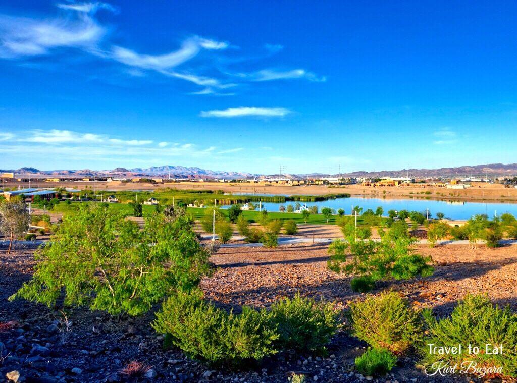 Spring Landscapes in Las Vegas Henderson nevada
