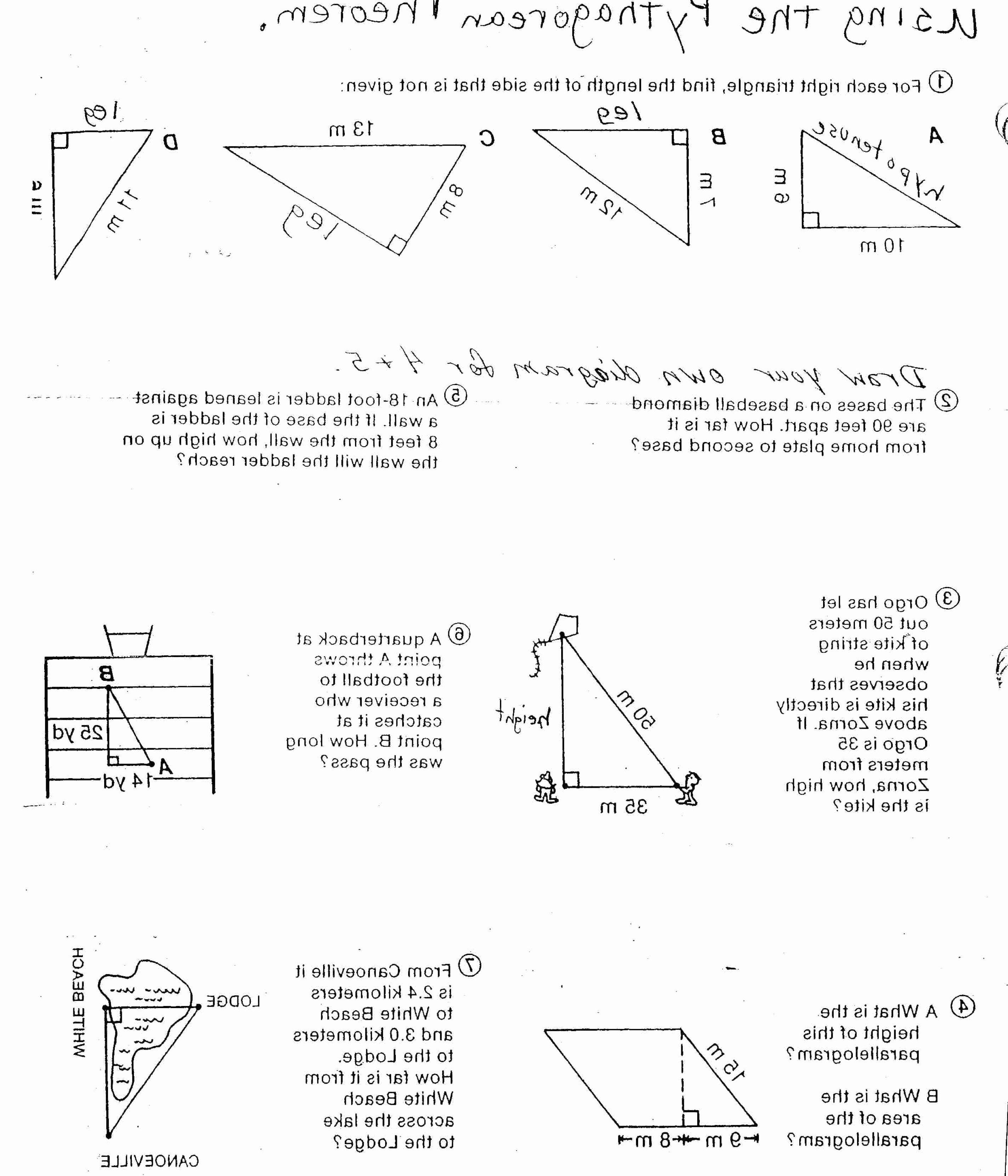 Vector Worksheet Physics Answers Elegant Vector Worksheet