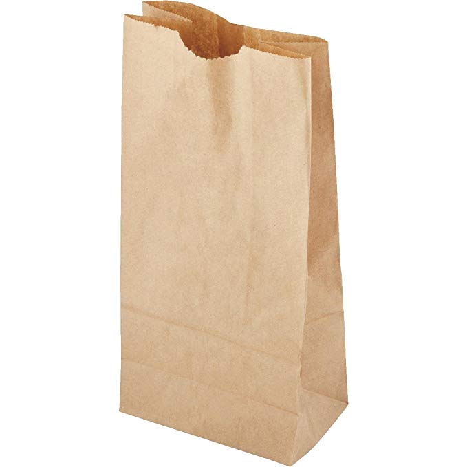 Amazon Com 40 Count Brown Paper Lunch Bag Recyclable Biodegradable 2 Pack Kitchen Dining Paper Lunch Bags Brown Paper Lunch Bags Paper Lunch