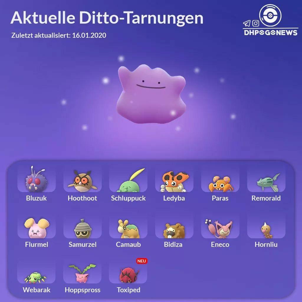 290 Pokemon go-Ideen | pokemon, pokemon go entwicklung, pflanzen pokemon