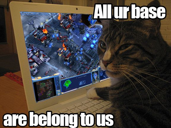 All Your Base Are Belong To Us And All Your Cats Are Belong To Us