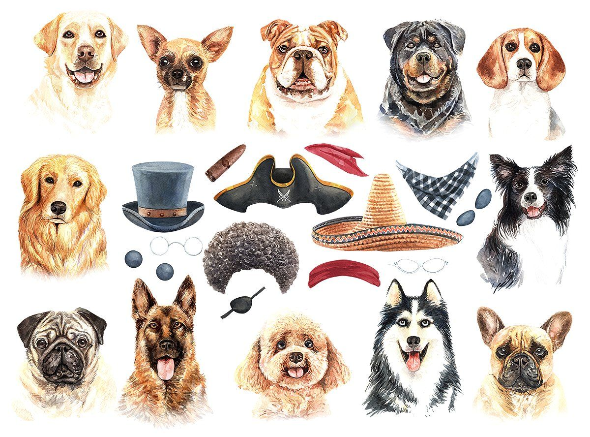 Dog Watercolor Animal Clipart