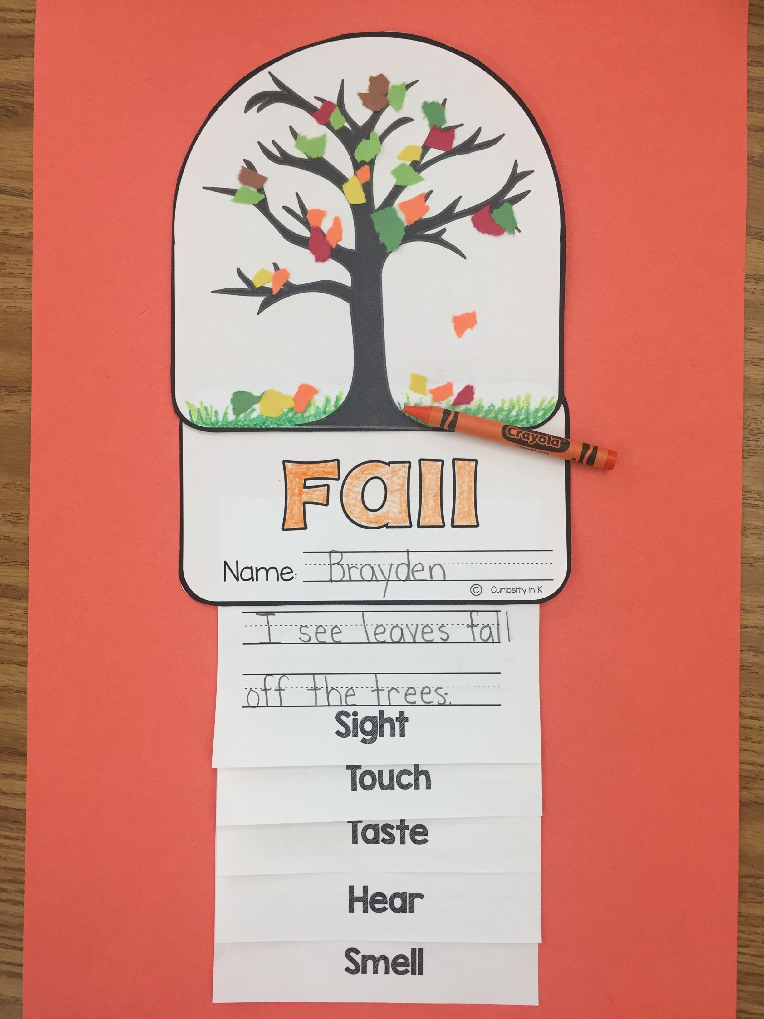 Five Senses Flipbook | ELEMENTARY EDUCATORS | Pinterest