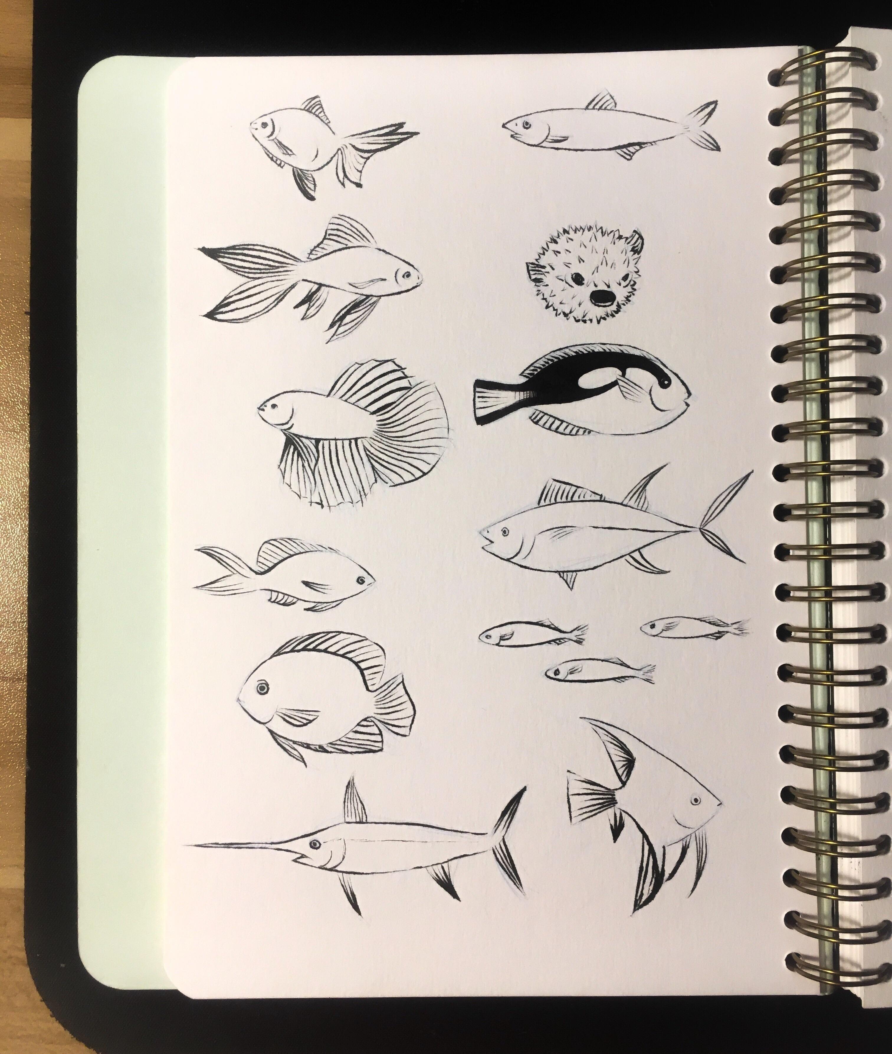 Fish A5 Pentel Ink Brush Pen 2018 Brush Pen Pentel Brush Pen