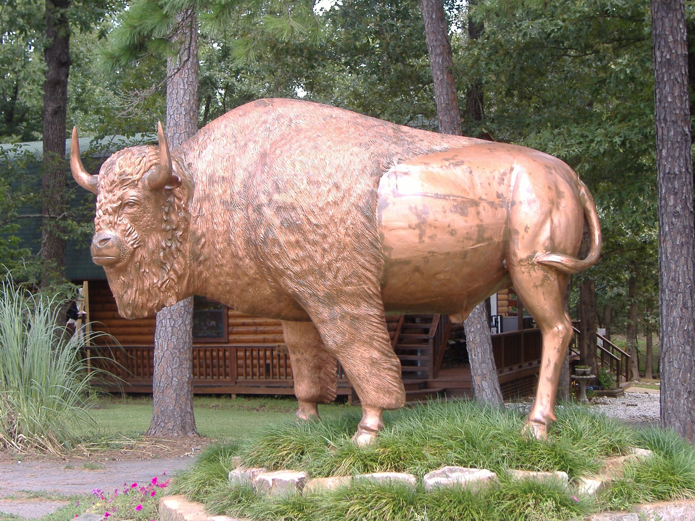 Beavers bend wildlife museum travel and tourism