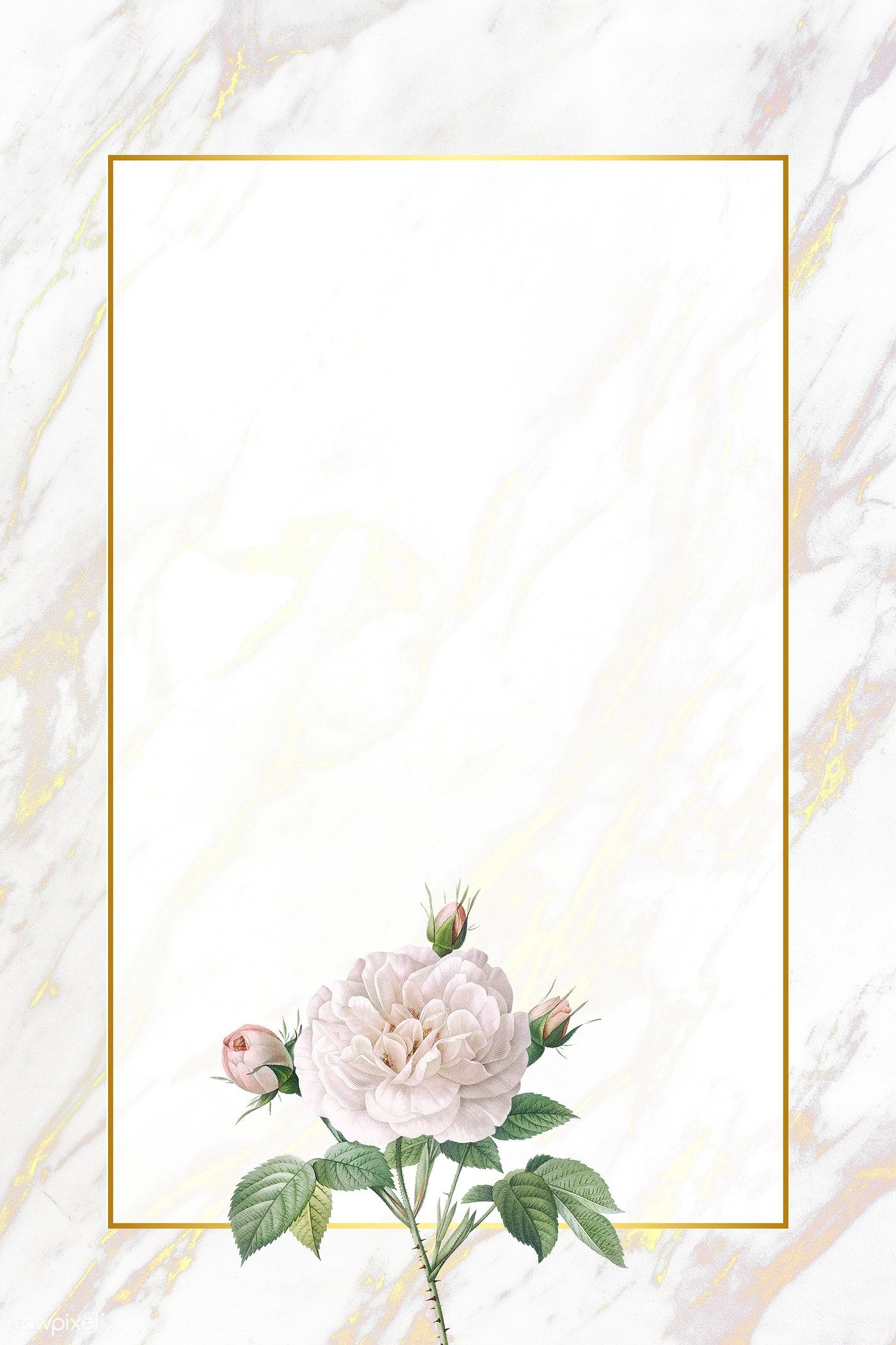 Download Premium Illustration Of White Flower Element On Marble