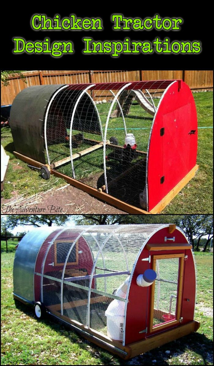there are several ways to house backyard chickens but all these