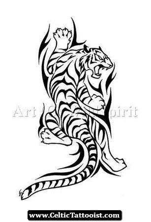 Celtic Tiger Tribal Tiger Tattoo Tribal Tiger Tiger Tattoo Design