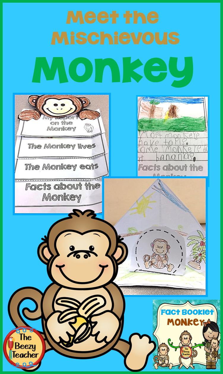 Monkey Fact Booklet