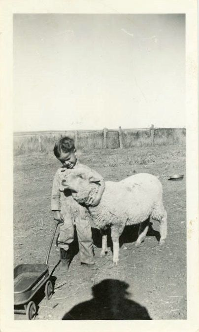 "Foto de época ""De Billy granja amigo"" Animal oveja cordero mascota instantánea…"