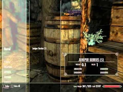Let's Play Skyrim Part 35 The Dragon's Ritual (1/3)