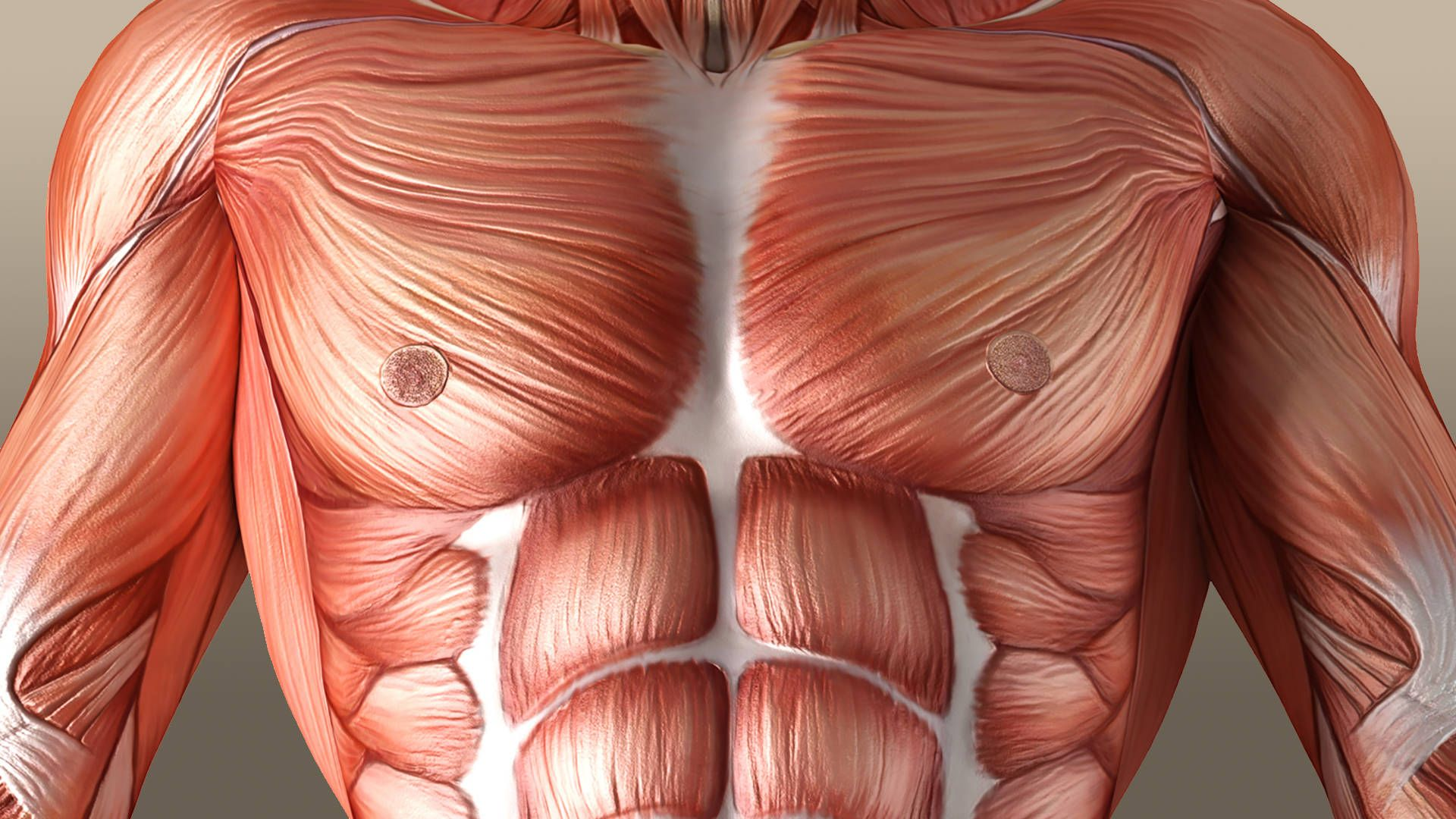 Living Well Therapeutic Massage Greenwood, SC | Greenwood, SC ...