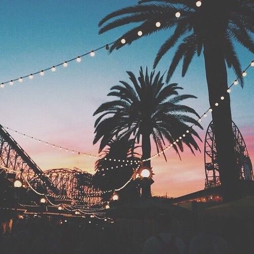 Image result for sunset with palm trees tumblr night potential