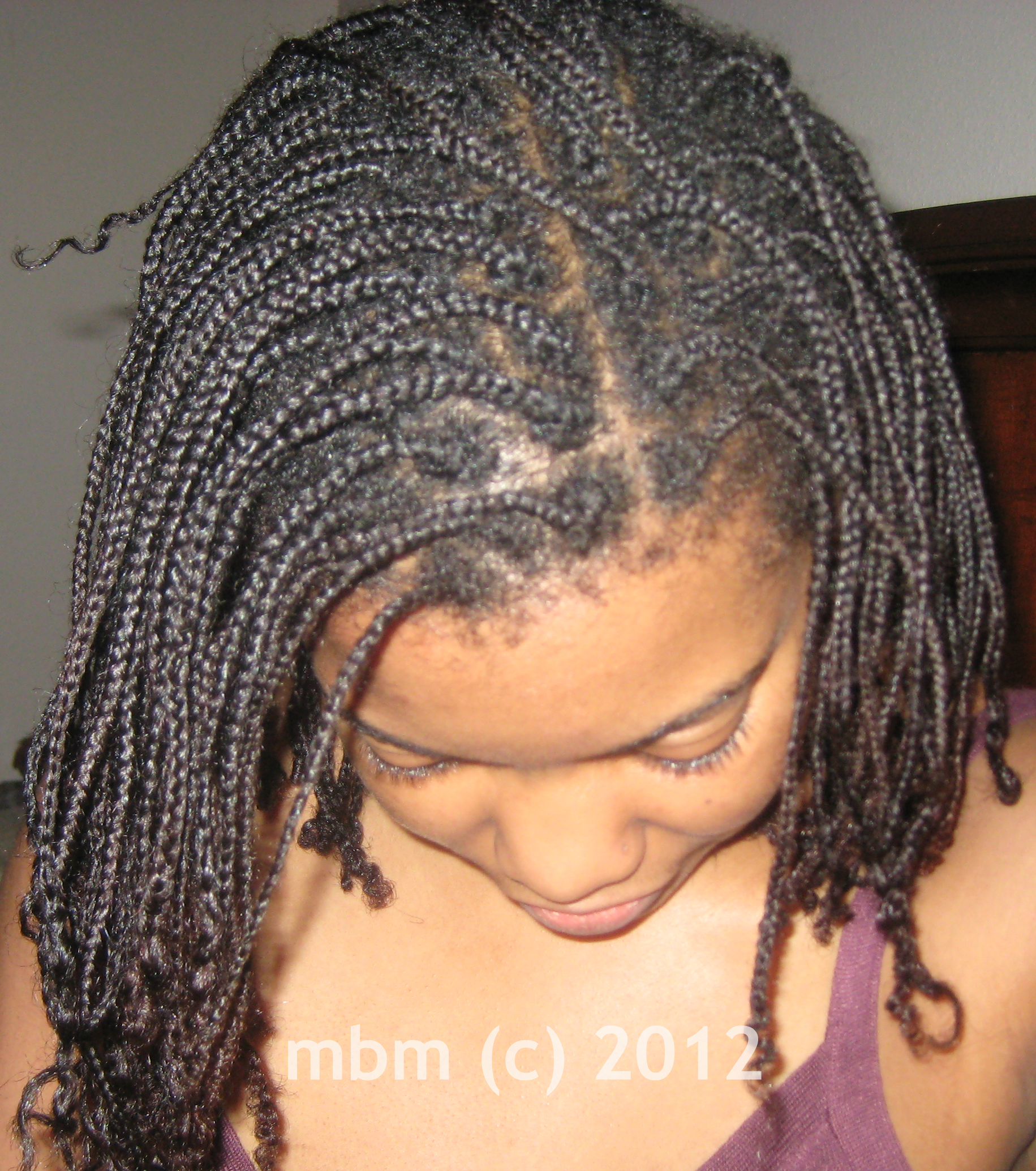 The Mini Braid Method Braided Hairstyles Natural Hair Styles Hair Styles