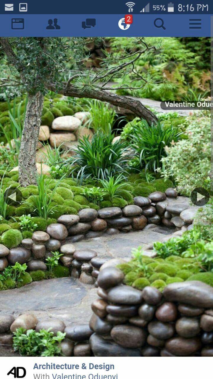 Pin by Laiken on Dream garden   Pinterest   Dream garden and Gardens