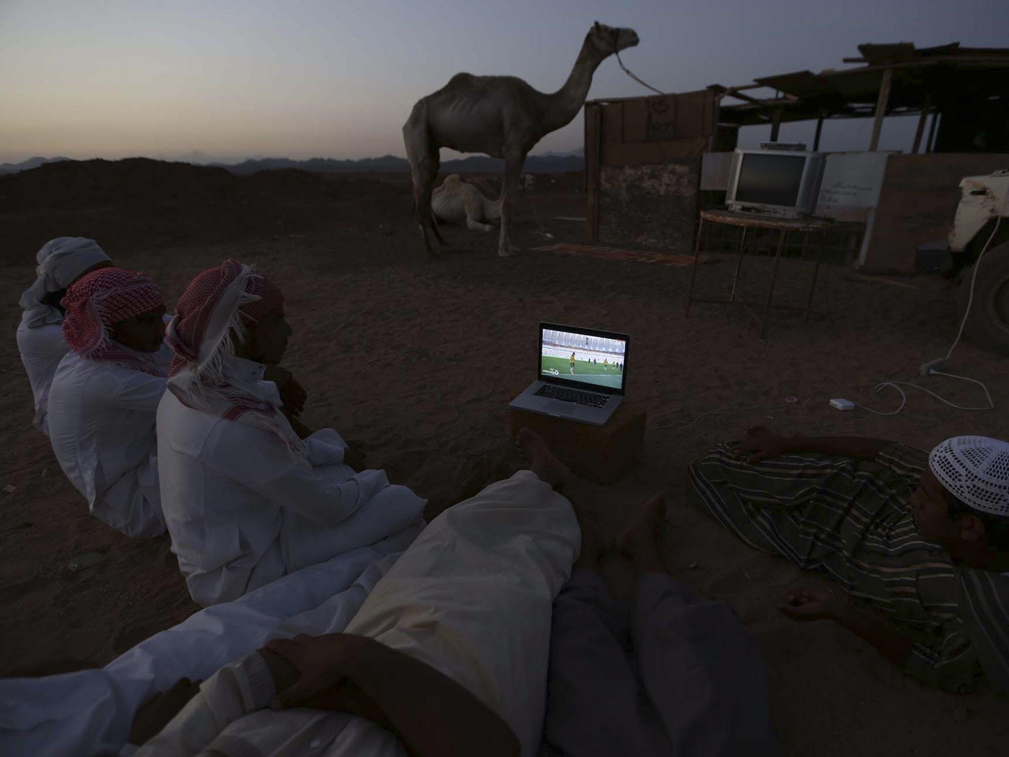 In Saudi-Arabien schauen Männer auf einem Kamelmarkt Fußball auf einem Laptop